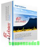 Codelobster – Professional version discount coupon