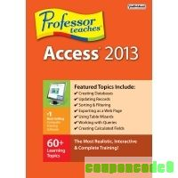 cheap Professor Teaches Access 2013