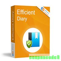 cheap Efficient Diary Network