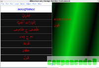 Arabic Runtime Environment discount coupon